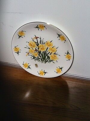 Welsh Tenby Daffodil Decorative Plates