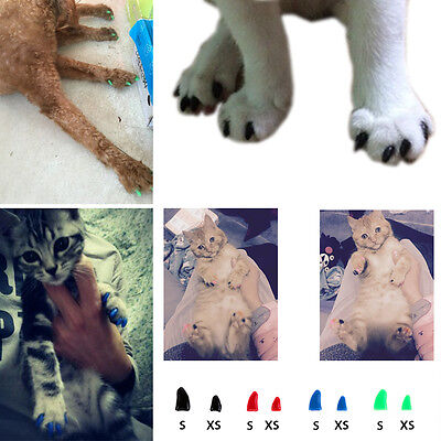 Dog Claw Covers Cat Paw Nail Cap Pet Grooming Non-toxic Protective Silicone Soft