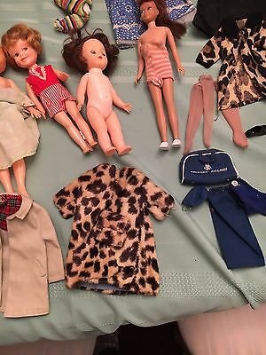 1961 Barbie Case, Ken And Skipper With Clothes And Dolls