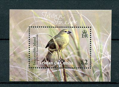Tristan da Cunha 2014 MNH Finches 1v S/S Inaccessible Island Finch Birds Stamps