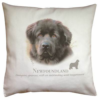 Newfoundland Dog | 100% Cotton Cushion Cover with Zip | Howard Robinson | Gift