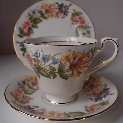 Paragon Trio ~Tea Cup Saucer & Side Plate ~ Country Lane, Honeysuckle