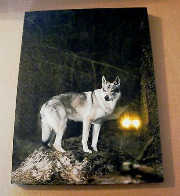 16x12  country primitive WOLF Lighted canvas print LED fire pit lodge decor Sign
