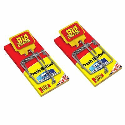 2 x THE BIG CHEESE FRESH BAITED MOUSE MICE TRAP 100% CATCH & KILL RATE