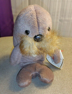 TY Beanie Babies JOLLY Walrus Retired Plush Toy  with PVC Pellets