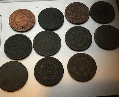 11 US Large Cents Bundle