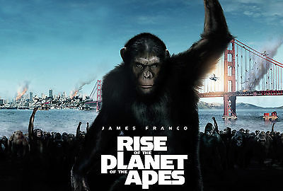 Rise Of The Planet Of The Apes Movie Poster 61x91 cm ECONOMY