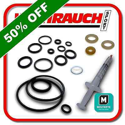 WEIHRAUCH HW100 Polyurethane PTFE O Ring seal service kit