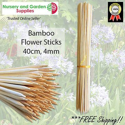 400mm (40cm) Bamboo Flower Sticks - 4mm various quantites, plant stakes orchids