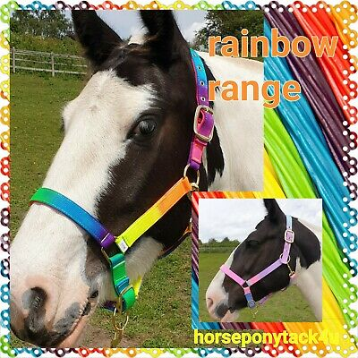 Rainbow Multi Coloured Headcollars Foal Pony Cob Full Size