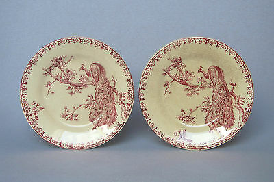 (REDUCED)- PAIR OF ANTIQUE FRENCH IRONSTONE PLATES, GIEN, late 1800s-early 1900s