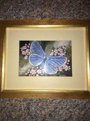 Cashs Woven Pictures Picture Frame Common Blue Butterfly Framed Art