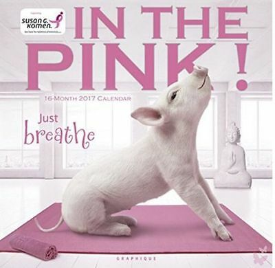 """In The Pink 2017 12"""" x 12"""" Wall Calendar (CY30017) By Graphique"""