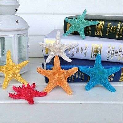 5 pcs Natural Starfish Shells Seashells Sea Star Crafts Decor Wedding Beach Home