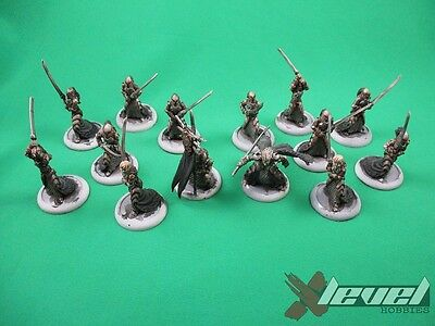 Blighted Nyss Legionnaires x 12 and Captain Farilor and Standard [x1] Legion ...