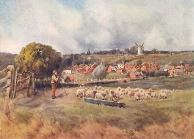 ESSEX. Roding Valley. An Pastoral 1909 old antique vintage print picture