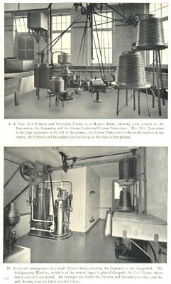 DAIRY REFRIGERATION. Primary and Secondary Cooler. Pasteurizer 1912 old print