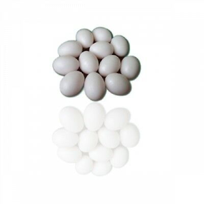 Pigeon Supplies - Dummy Eggs for pigeons - 10pk