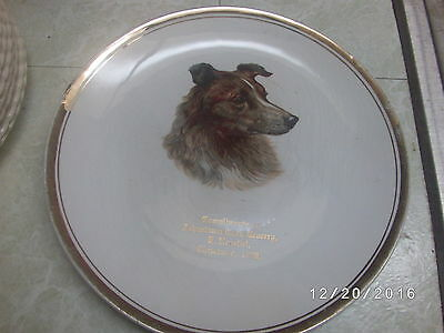Antique Vintage Christmas 1908 Collectors Plate Johnstown Pa Cash Grocery Dog