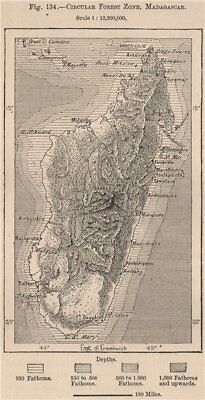 Circular Forest Zone, Madagascar 1885 old antique vintage map plan chart