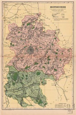 BEDFORDSHIRE. Showing Parliamentary divisions, boroughs & parks. BACON 1901 map