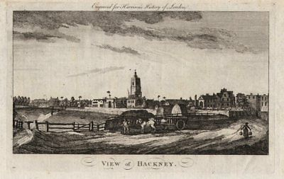 """View of Hackney"", London. HARRISON 1776 old antique vintage print picture"