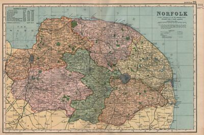 SUSSEX boroughs /& parks BACON 1896 old map Showing Parliamentary divisions
