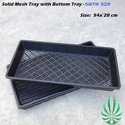 Hydroponic Seedling Tray Solid Propagation Mesh Tray Fit to Seedling Plug Tray