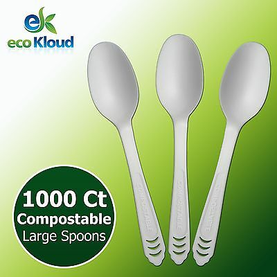 Eco Kloud Compostable Spoon CPLA Large 1000 ct