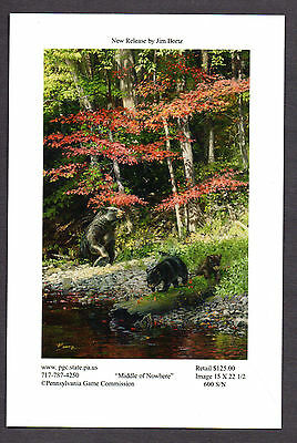 Pa Pennsylvania Game Commission WTFW 2011 Black Bear Lithograph Print Card