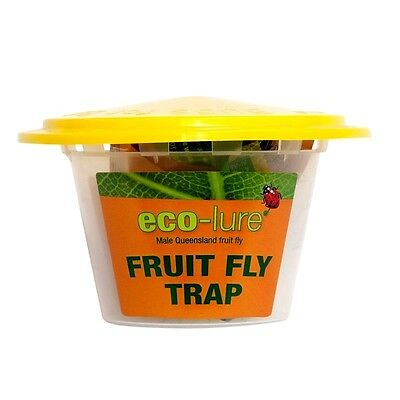 ECO LURE FRUIT FLY TRAP - Male Queensland fruit fly Catcher