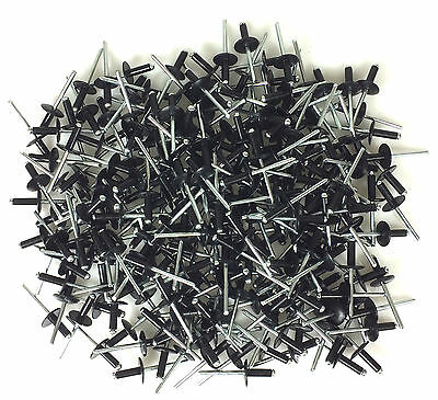 "250 3/16"" Large Head Black Painted Aluminum Pop Rivets #1008"