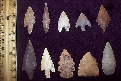 Neolithic Arrowheads / Group of 10 (Assorted)          #44-1