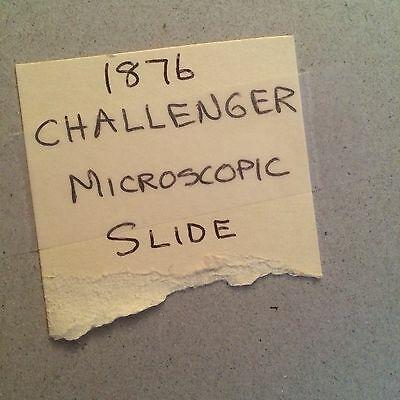 1876 Microscopic Slide Challenger Expedition