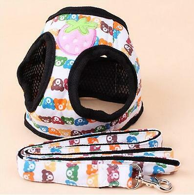 Teddy Bear Dog Harness Comes with Matching lead Small Medium Dog Sizes Breeds