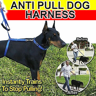 Anti Pull  Dog Train Harness Walking Leash Lead With Handle Anti-Pull All Dogs
