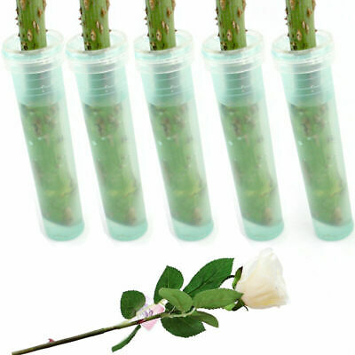 Lot of 25 Green Plastic Flower Water Tubes Floral Aqua-tubes Crafts 2.8""