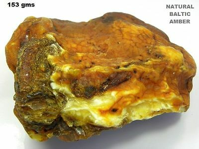 Natural Baltic AMBER Stone  ROUGH  (Not Polished) Specimen 153 gms