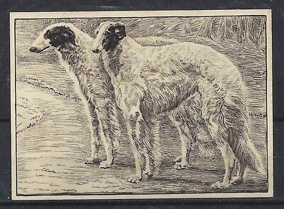 Rare 1938 UK Dog Art Etching Ardath Cigarette Card BORZOI RUSSIAN WOLFHOUND Exc!
