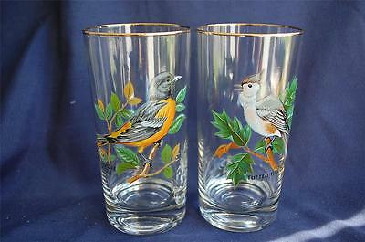 2 Bird Hiball Glasses Painted Design Tufted Titmouse & Oriole Trimmed W/Gold