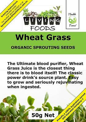 Wheat Grass 50g (Sprouting Seeds) FREE GIFT When you spend $25 or more