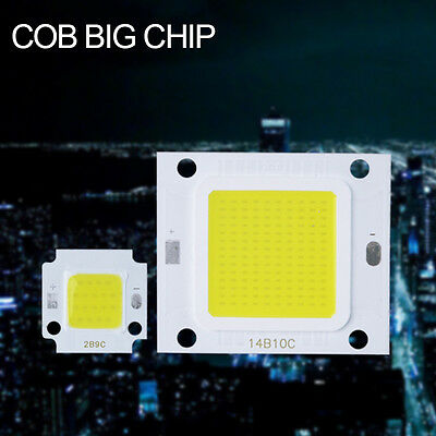 High Power LED Chip Bulb COB LED Driver Supply Waterproof 20/30/50/70/100W