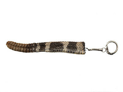 Rattlesnake Rattle and Tail Keychain