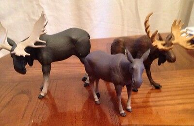 3 Plastic Moose 2 Bull 1 Female.  Animal Toy Decoration Craft Collectible Figure