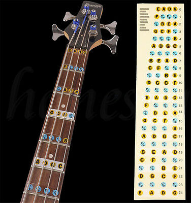 Fretboard Note Sticker Musical Scale Label for Acoustic or Electric Guitar NEW