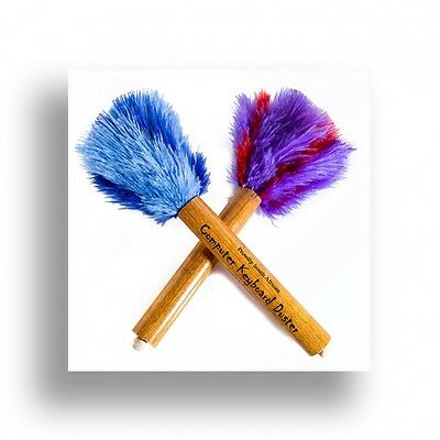 Two ( 2 ) keyboard small ostrich feather dusters assorted colours gift line