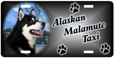 Alaskan Malamute 1 Taxi Line License Plate  ((( SPECIAL LOW CLEARANCE PRICE )))