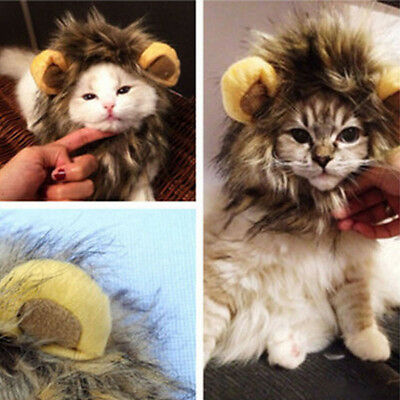 Dress Up Cat Ears Costume Lion Mane Wig Pet Furry Hat Halloween Party