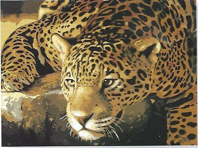 New Rare Jaguar Portrait Tapestry Wool Kit- Ready To Stitch & Enjoy Forever!