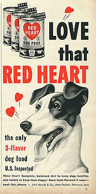 Jack Russell Terrier Red Heart Dog Food Ad 1950 Vintage Original Red White Black